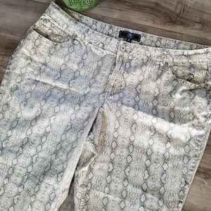 Cato gray snakeskin print capri pant size 26W